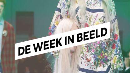 De Week in Beeld - 24 februari 2018