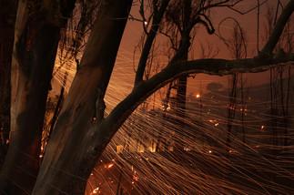 fotoreeks over Bosbranden verjagen tienduizenden mensen uit hun huis in Californië
