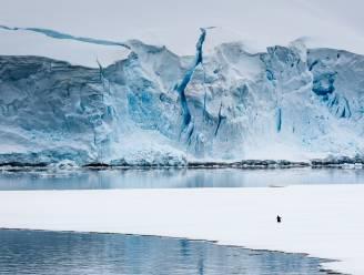"""""""Een derde van de Antarctische ijsplaten zal mogelijks instorten bij opwarming van de Aarde met 4°C"""""""