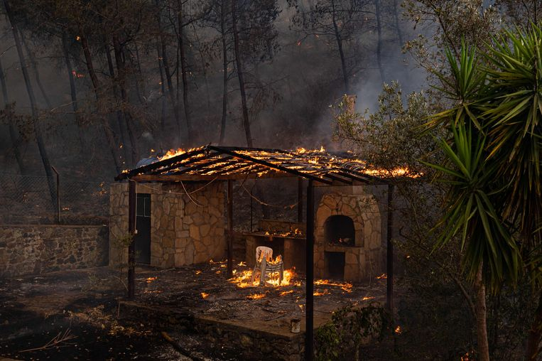 Amsterdammers maken bosbranden van dichtbij mee: 'Het is een puinhoop'