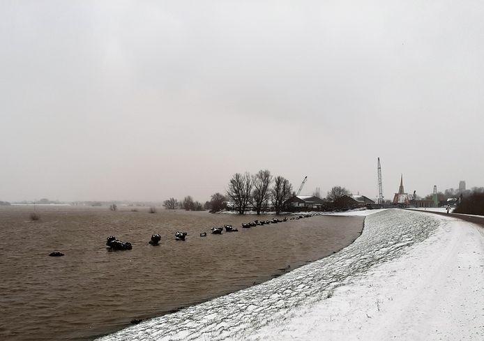 Het water van de Waal klotst tegen de besneeuwde dijk tussen Zaltbommel en Gameren.