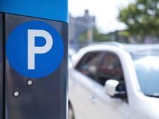 Parkeeroverlast blijft probleem tijdens Rhenense Rijnweek