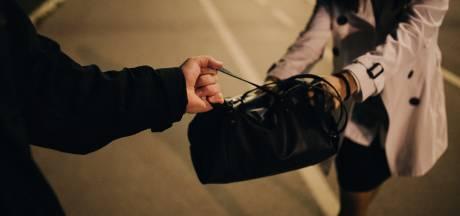Hoogbejaarde vrouw (90) beroofd in Bergen op Zoom, 'kordaat' tweetal draagt dader over aan politie