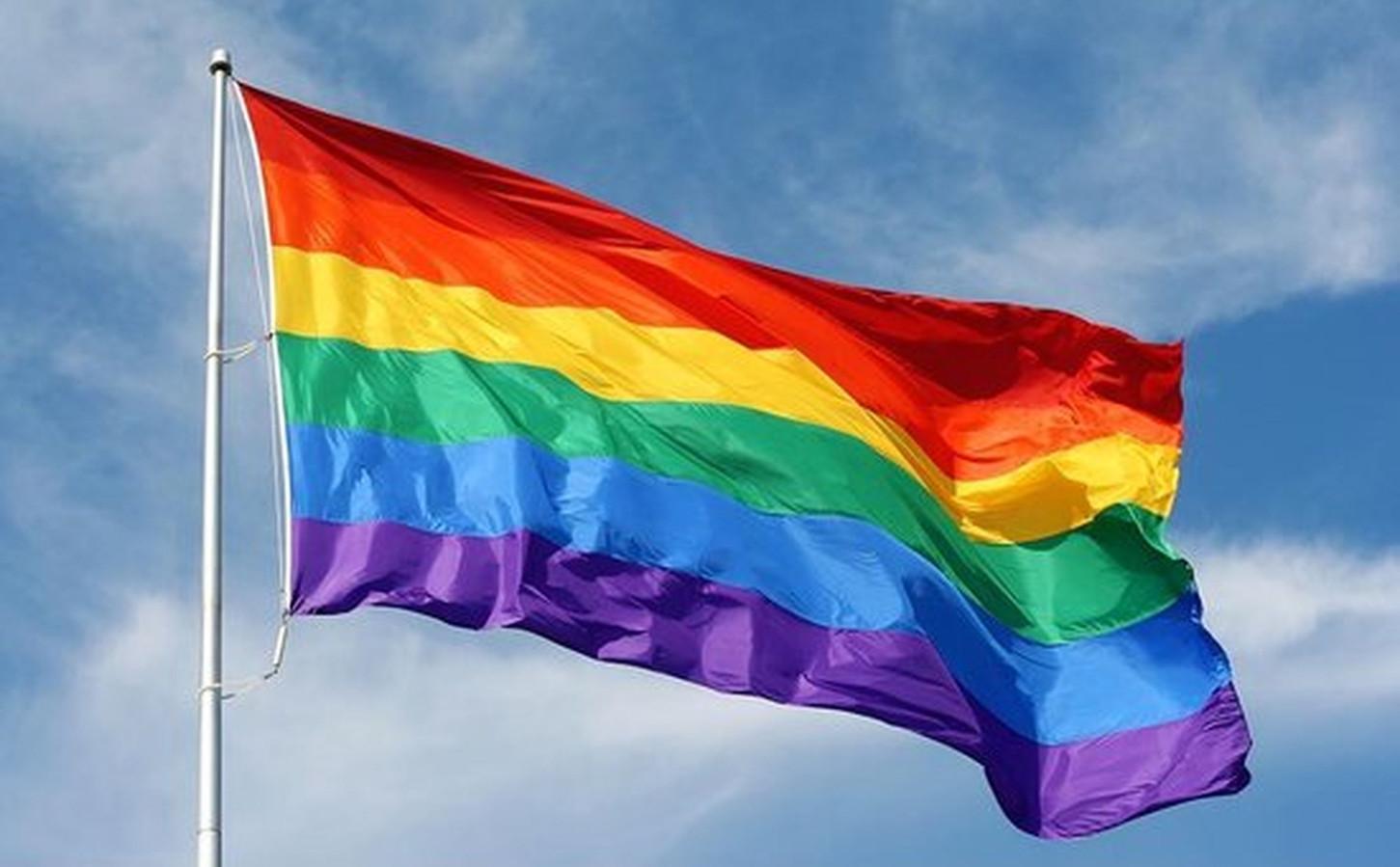 De regenboogvlag