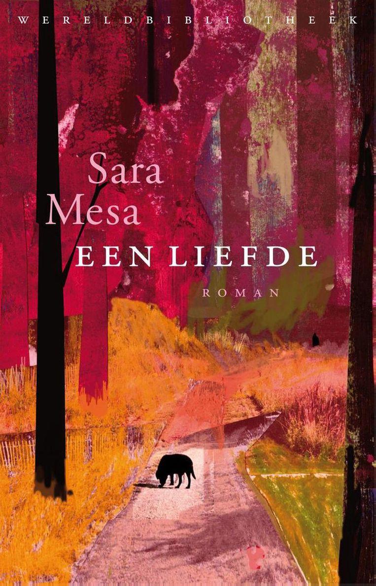 Sara Mesa, Een liefde Beeld