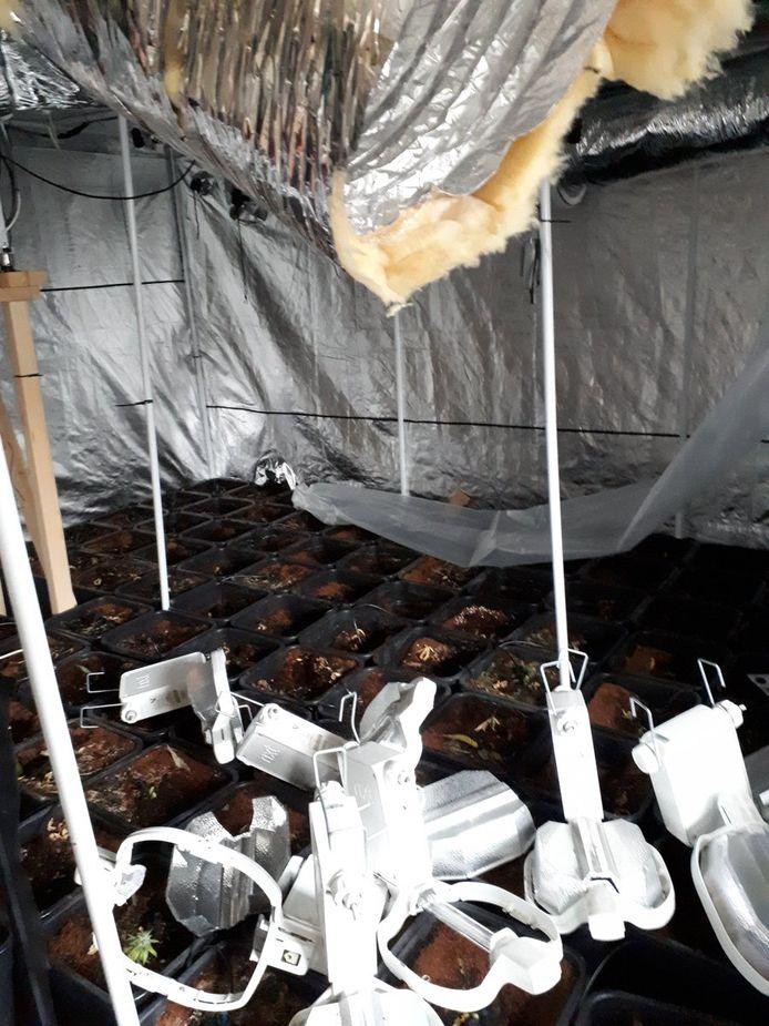 Een deel van de kwekerij na de ontmanteling van de politie.