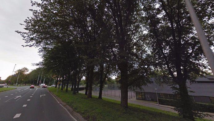 De Molenaarsweg in Amsterdam-Noord.