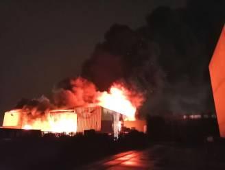 Uitslaande brand bij afvalverwerkend bedrijf in Herenthout