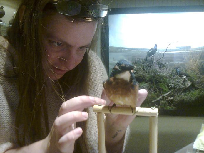 Jentai van Grevenhof prepareert een vogel