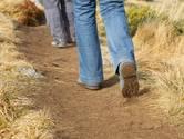 23 september: Ouderen wandelen vanuit Scherpenisse