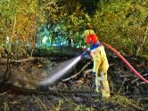 Brandweer blust korte maar felle brand in bossen bij Riethoven
