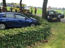 Flinke aanrijding in Dalfsen: gelanceerde auto komt in tuin tot stilstand