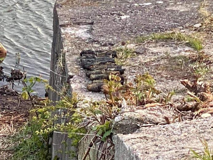 Magneetvissers in Willemstad vinden granaten in het water.