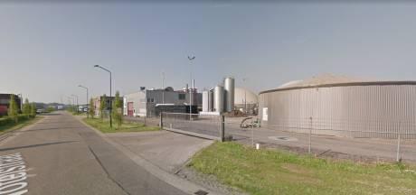 'Eigen stront op eigen grond' of een lokale oplossing? Roosendaal worstelt met mestfabrieken