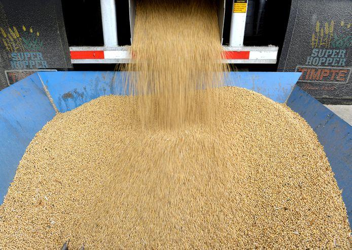 China gaat hogere invoerbelasting heffen op onder meer sojabonen uit de Verenigde Staten.