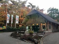 Huurders Vakantiepark Arnhem verzetten zich tegen verhuizing: 'We zien wel wat er gebeurt'