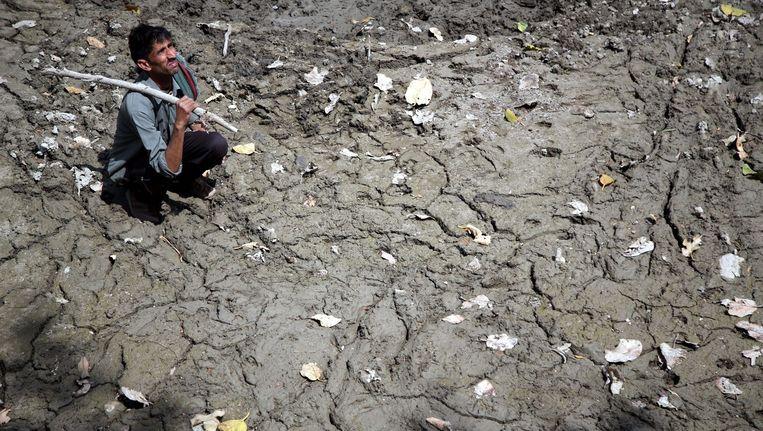 Een dorpsbewoner in het district Kasjmir, dat door extreme droogte is getroffen. Beeld epa