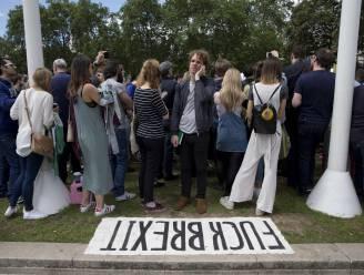 Al meer dan 2,5 miljoen Britten eisen tweede referendum Brexit