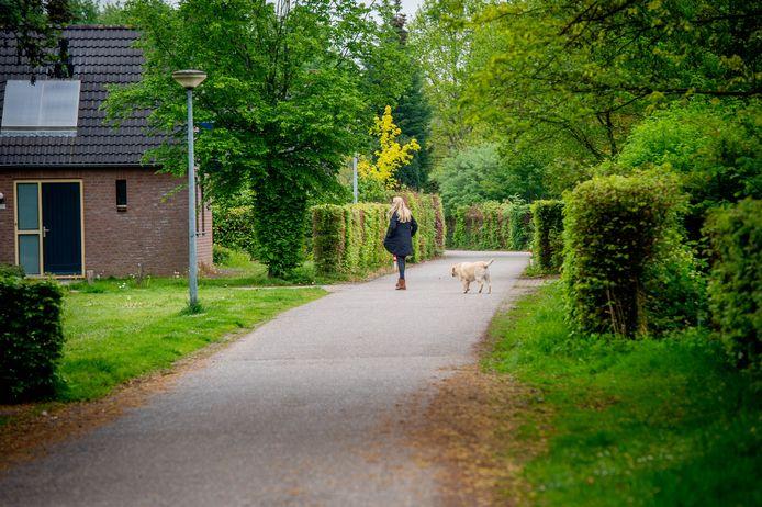 Groene Heuvels in Ewijk.