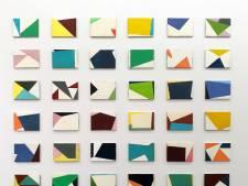Schilder Dave Meijer schept orde in de chaos