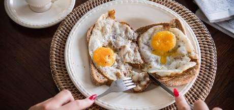 Bed and breakfast in Woudrichem valt slecht bij buren
