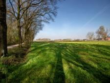 Dorpspark De Groene Long in Bladel krijgt vorm