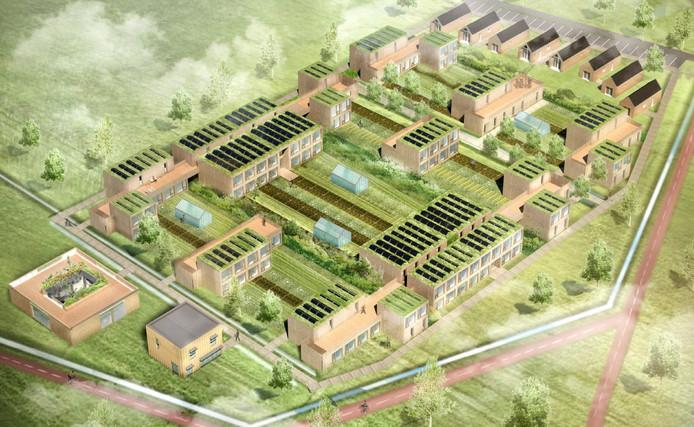 Zo zouden de tijdelijke woningen die De Meeuw uit Oirschot wil bouwen in Brandevoort Helmond er uit kunnen komen te zien.