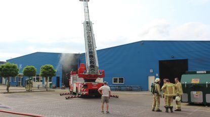 VIDEO: Brand zorgt voor hevige rookontwikkeling in Hasseltse bedrijfshal