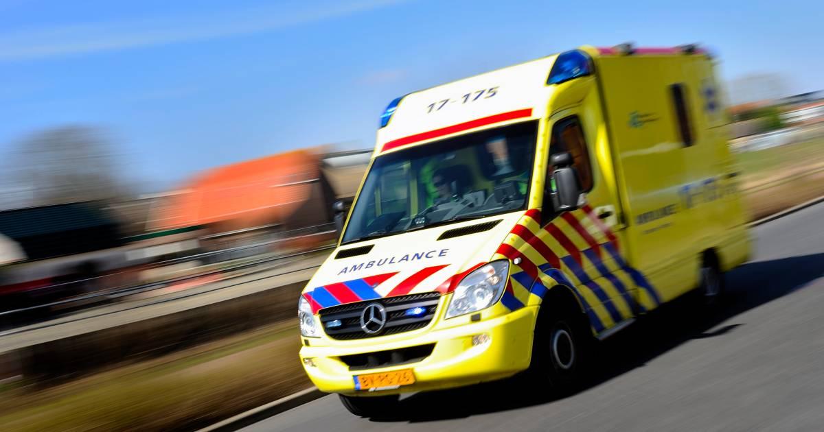 Automobilist uit Gameren overleden na botsing tegen boom in Hedel.