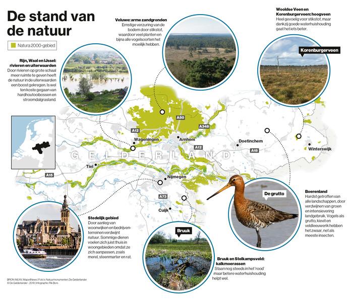 De stand van de natuur in Gelderland. Infographic.