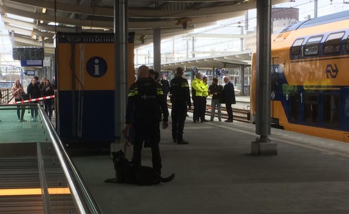 Politie met politiehonden op station