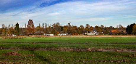 Nuenense boer ontdekt de zorg: dagbesteding in trek als alternatief na stoppen met agrarisch bedrijf
