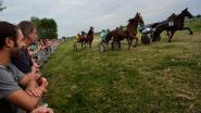 Feest van het paard onder een stralende zon