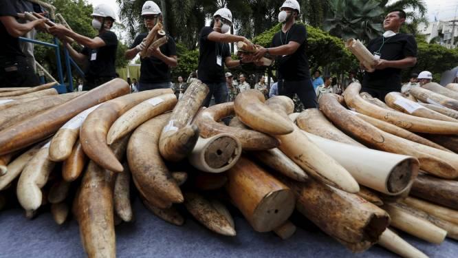 Handel in ivoor volledig verboden in China