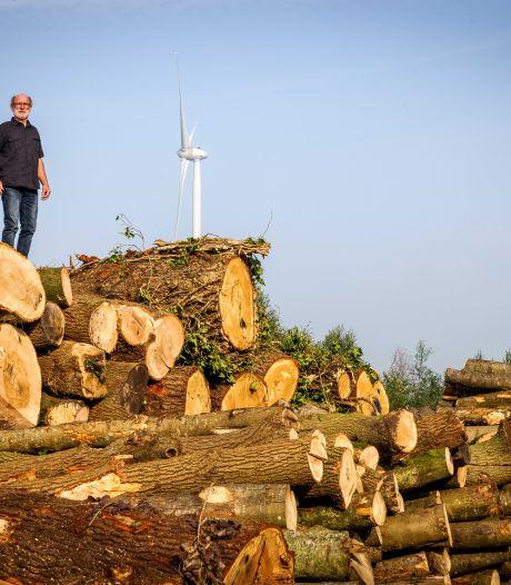 Ap (68) stapt naar rechter, nu schadevergoeding rond windmolens in Dedemsvaart hem niet bevalt: 'Ook voor anderen'