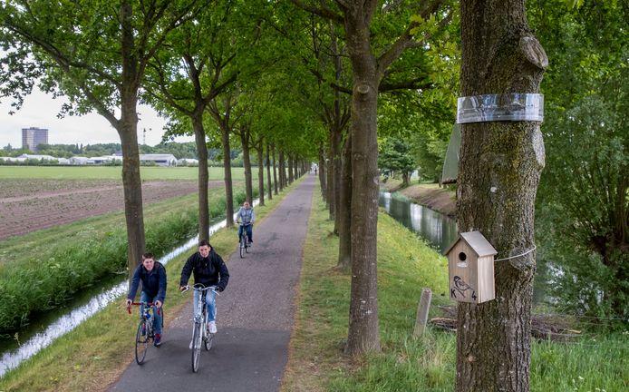 Onbekenden hebben rupsenvallen en nestkastjes opgehangen in bomen langs het fietspad aan de Dijkgraaf.
