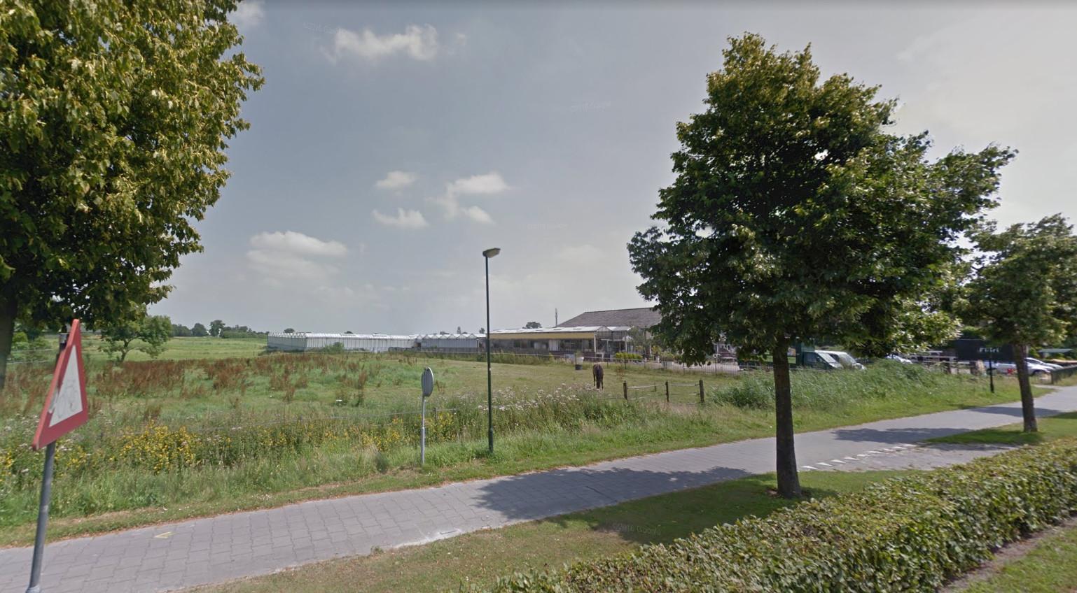 Op de locatie ten oosten van de Tilburgseweg staan nu nog de kassen van voormalig tuincentrum Van Dal. Deze moeten volgens het plan plaatsmaken voor tien woningen.