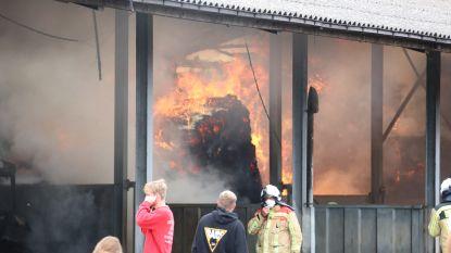 Achterkant van stal gaat in vlammen op nadat grote lading stro vuur vat