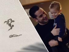 Duizenden rupsen kruipen over het huis van Eindhovens gezin: 'We zijn al twee weken op de vlucht'