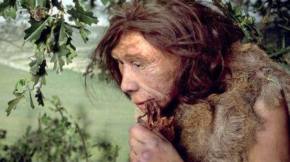 Belgische neanderthalers aten elkaar 40.000 jaar geleden op