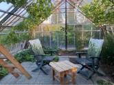 Na vijf jaar was de tuin van Coby en Harrie eindelijk aan de beurt: 'Met druivenserre, als echte Westlanders'