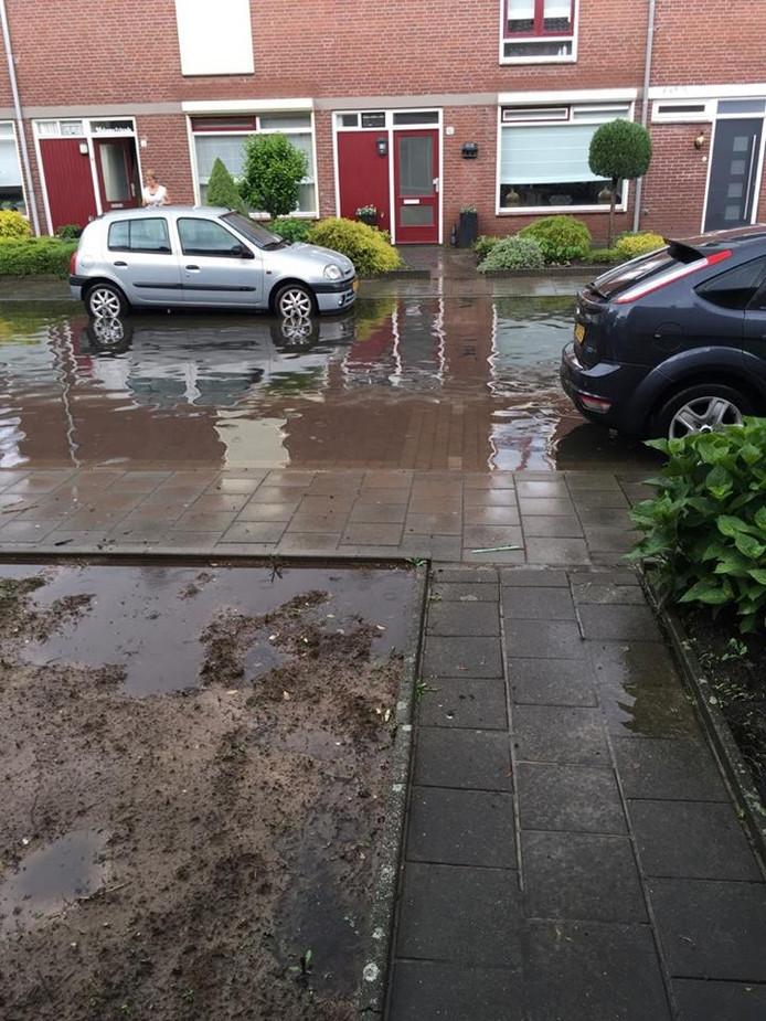 Eeuwsels in Helmond-Noord