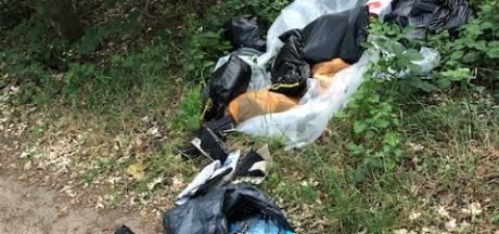 'Meer dumpingen' afval in de natuur
