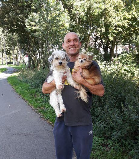 Chihuahua Muis overleefde aanval van pitbull niet: 'Ze is in mijn armen gestorven'