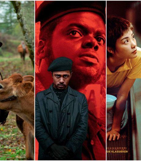 Wat zijn momenteel de bioscoopparels tussen al het Hollywoodgeweld?