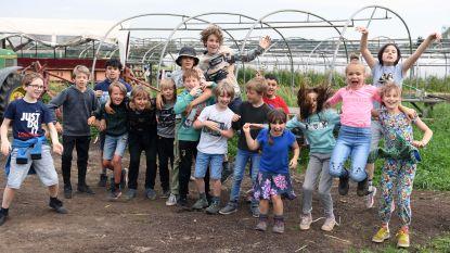 Leerlingen De Appeltuin houden klimaatacties op de velden van Boerencompagnie aan Abdij van Park