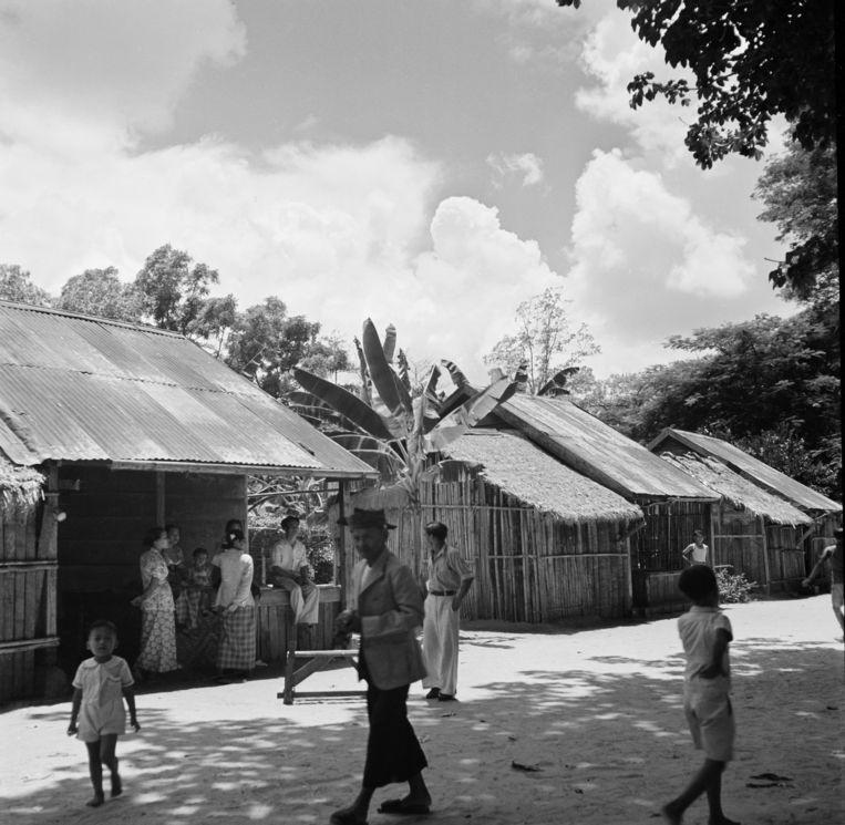 Terugkeren zat er voor veel koelies niet in. Voor sommige nazaten werd het leven buiten de plantages beter, zoals in deze huizen in Paramaribo. Beeld Getty Images