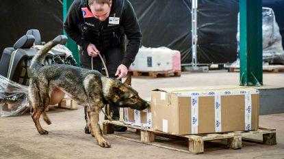 """Hondenteams politie in acute geldnood: """"Probeer van asielhond maar eens politiehond te maken"""""""