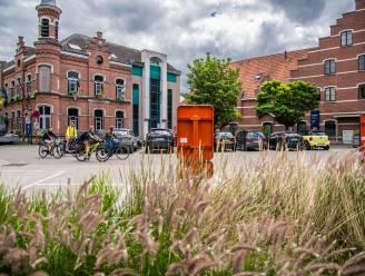 """Oppositie dringt aan op fysieke gemeenteraad in juni, maar CD&V houdt been stijf: """"Pas in september voor veiligheid"""""""