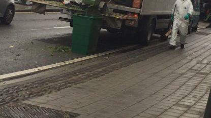 Wietplantage aan Rijksweg opgerold